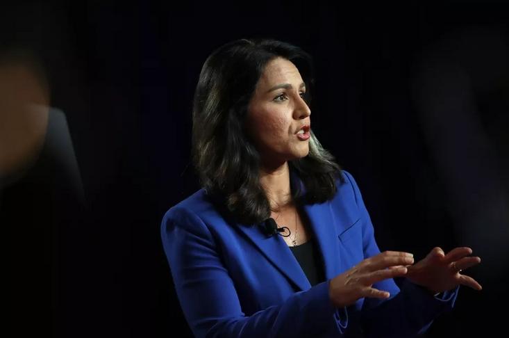 """美总统候选人Tulsi Gabbard控告谷歌""""压制""""其在网上的竞选活动"""
